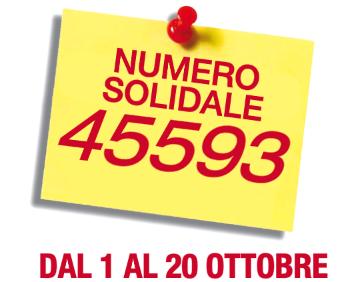 SMS Solidale Mela 2013