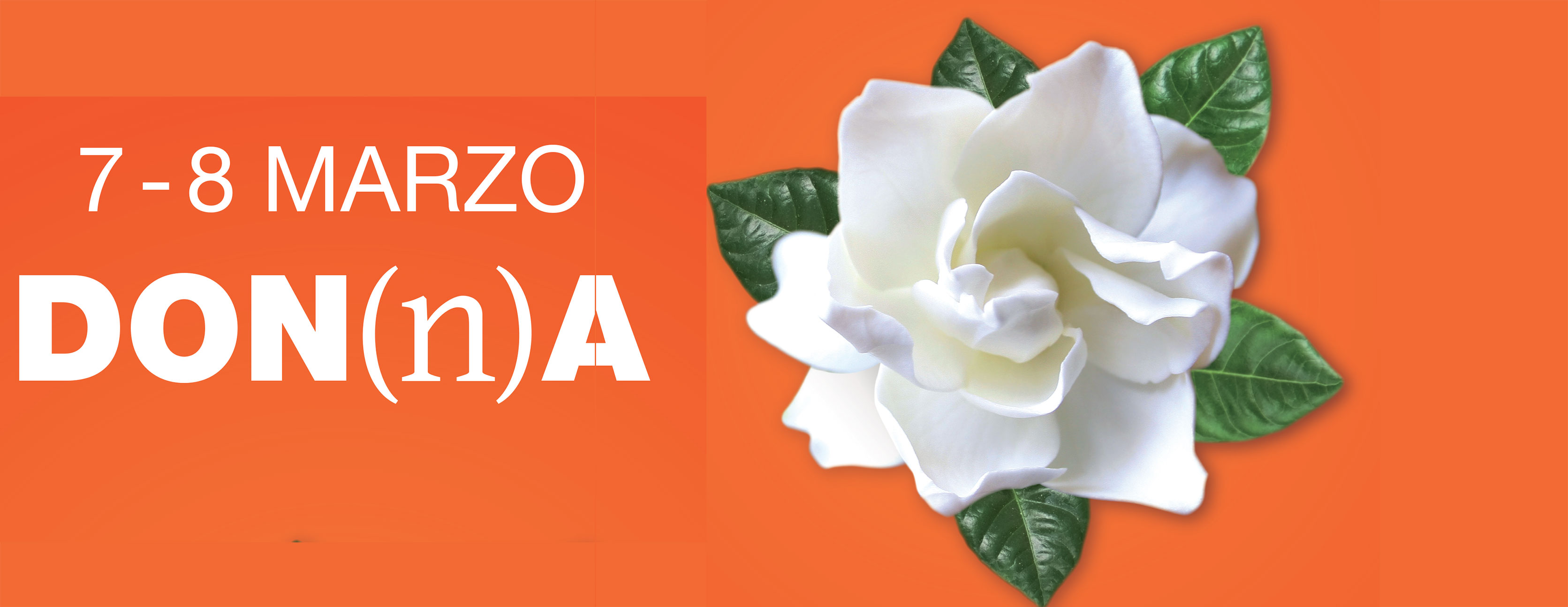 Banner Gardenia 2015 VA